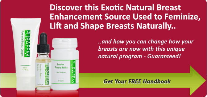 breast-enhancement-program